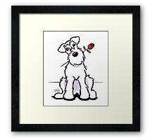 White Schnauzer Sweetheart Framed Print
