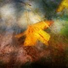 A Golden Dream by Susan Werby