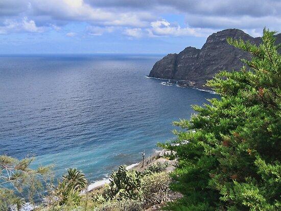 Sea View from La Gomera by Avril Harris