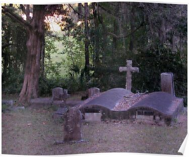 Old Graves Forgotten Artistic Photograph by Shannon Sears by twobrokesistas