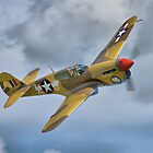 The Fighter Collection's Merlin-Engined P-40F by Colin  Williams Photography