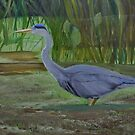 Blue Heron Wades in Swamp by towncrier
