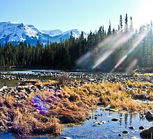 Sun Spot on Lens in Jasper by Flatoutwhimsy