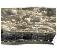 Mannings pond in monochrome Poster