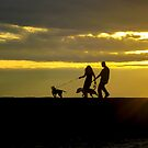 Walking the Dogs at Sunset by Mikell Herrick