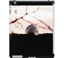 Jodrell Bank iPad Case/Skin