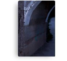 Slender Hiding (when you see it . . .) Canvas Print