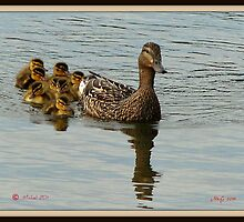 A family affair by MitchG