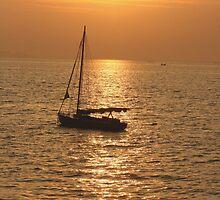 Golden Sunset by TINESH KALRA