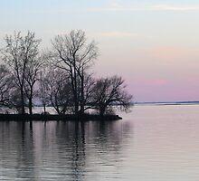 Island in the Dusk by Sandra Fortier