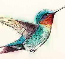 Ruby-throated Hummingbird by Ramona Frederickson