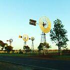 Four Windmills  by Liza Barlow