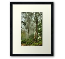 Bushland Dreams - Mount Wilson - NSW  - The HDR Experience Framed Print