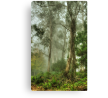 Bushland Dreams - Mount Wilson - NSW  - The HDR Experience Canvas Print