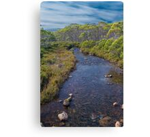 Navarre River, Nr. Derwent Bridge, Tasmania #2 Canvas Print