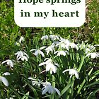 Hope Greetings Card by Katherine T Owen, Author