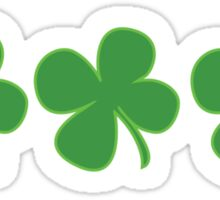 3 Clovers St Patricks Day Sticker