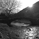 Packhorse Bridge by Lou Wilson