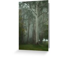 Mount Wilson Fantasy - Mount Wilson NSW - The HDR Experience Greeting Card