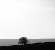 Tritone Peak District Landscape by Jamie Parker