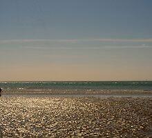 West Wittering Beach by Steve