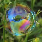 Bubble in the Grass by Sheryl Hopkins