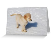 """Golden Retriever Puppy's First Winter"" Greeting Card"