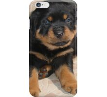 Rottweiler Puppy With Perplexed Facial Expression iPhone Case/Skin