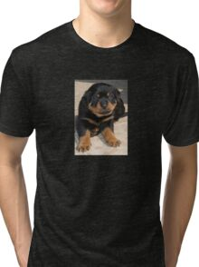 Rottweiler Puppy With Perplexed Facial Expression Tri-blend T-Shirt