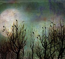 Moon Watchers by Susan Werby