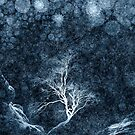 Midnight Ice Storm by Andrew Bret Wallis