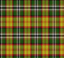 02333 San Bernardino County, California E-fficial Fashion Tartan Fabric Print Iphone Case by Detnecs2013
