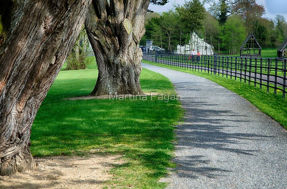 Out for a Stroll in Oldbridge Estate Meath by Martina Fagan