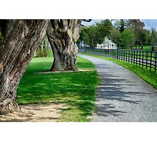 Out for a Stroll in Oldbridge Estate Meath Photographic Print