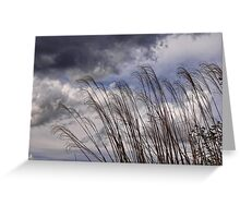 earth and sky Greeting Card