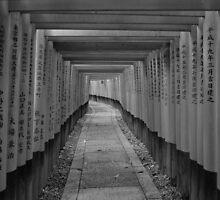 A thousand torii gates by sammyphillips