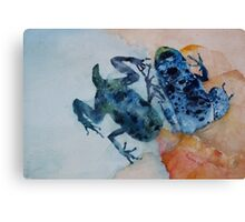 The Multiple Lives of Frogs Canvas Print