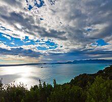 Cinque terre, Liguria landscape  by sdimartino