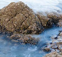 Sea Rock by sdimartino