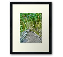 Victoria Peak path HDR Framed Print