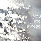 you are awesome by Elizabeth Halt