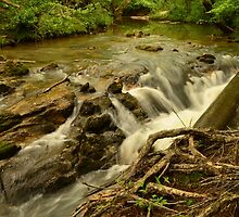 falls in the woods by jaymeb21