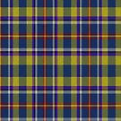 02343 Philadelphia County, Pennsylvania District Tartan Fabric Print Iphone Case by Detnecs2013
