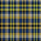 02345 Suffolk County, New York District Tartan Fabric Print Iphone Case by Detnecs2013