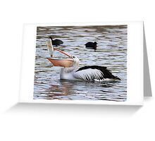 There Has To Be ONE Last Drop  ~ Pelican ~ Greeting Card
