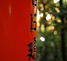 Dusk at Fushimi Inari-taisha Shrine, Japan by Emily McAuliffe