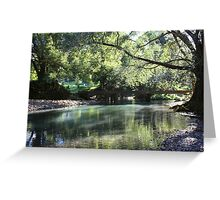 Hopkins Creek ... Greeting Card