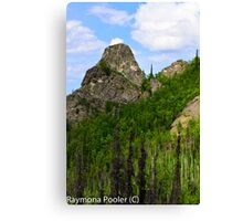 Hiking in Alaskas outback Canvas Print