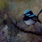 Blue Wren by Franciska Howard