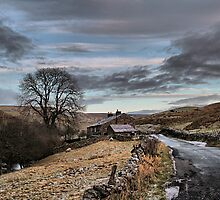 Winter on the moors. by Irene  Burdell